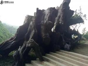 贵州安顺塑石假山