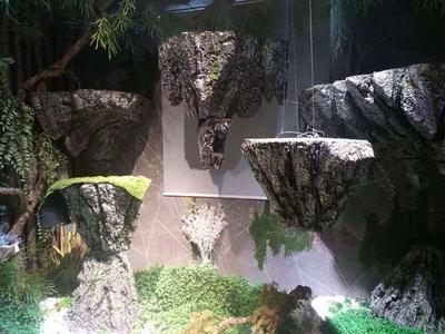广州白云泡沫悬浮假山案例